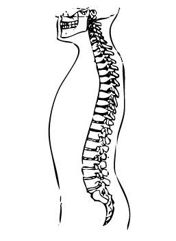 Neutral ryggrad marklyft