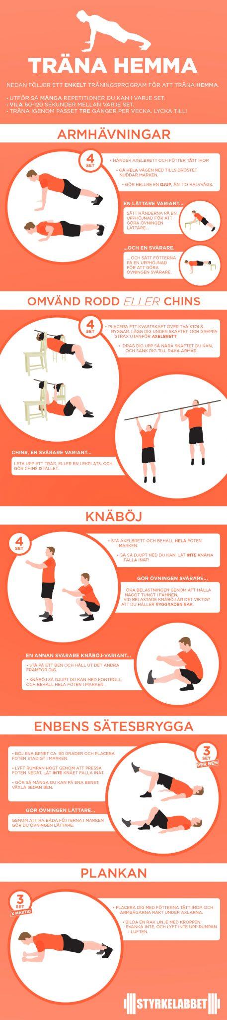 gymgrossisten träningsschema kille