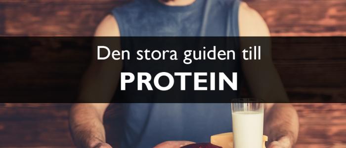 Protein för styrketräning